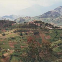 Rwanda Nature 1